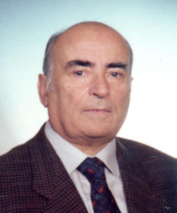Giulio Del Negro