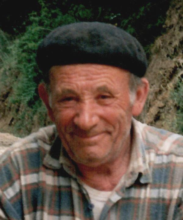 GINO ERCOLANI
