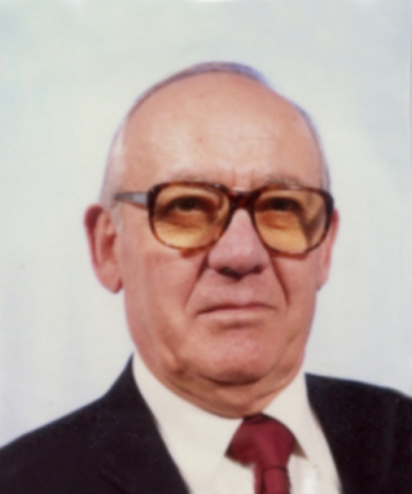 DOMENICO BOSTRENGHI