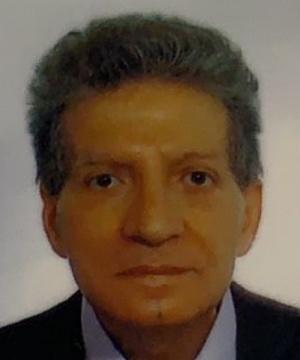 Vincenzo Principato